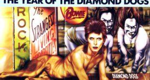 Diamond Dogs 30th anniversary 15