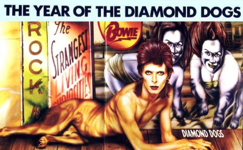 Diamond Dogs 30th anniversary 3