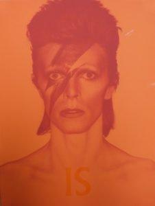 David Bowie is V&A Libri su David Bowie