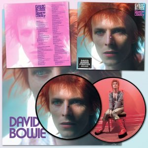 Space Oddity Picture Disc David Bowie 2