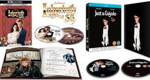 Labyrinth-Just-a-gigolo-blu-ray-4k-bowie-limited-edition-testata